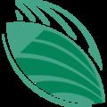 Seedcopa logo
