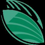 Seedcopa